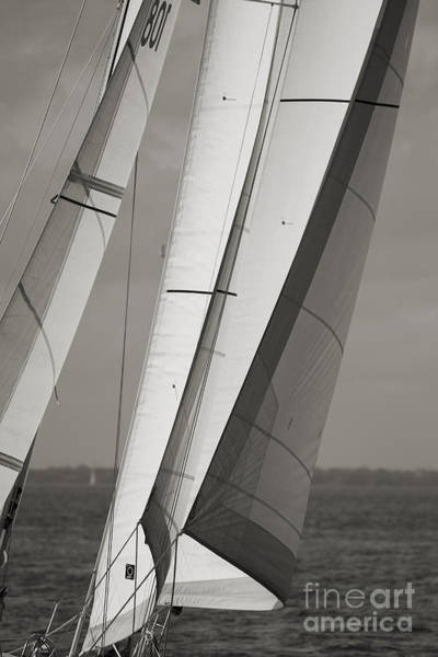 Wall Art - Photograph - Sails Of A Sailboat Sailing by Dustin K Ryan