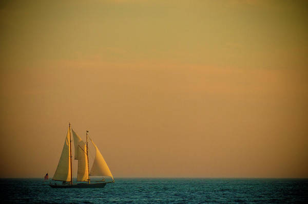 Photograph - Sails by Sebastian Musial