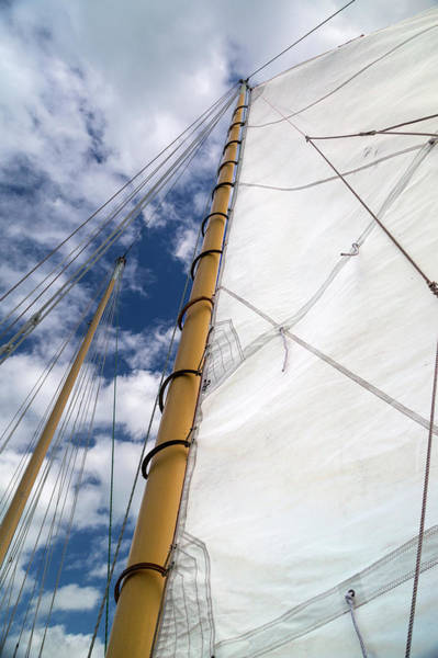 Wall Art - Photograph - Sails Up Sailing On by Betsy Knapp