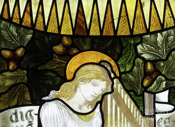 Wall Art - Glass Art - Saint Cecilia by Edward Coley Burne-Jones