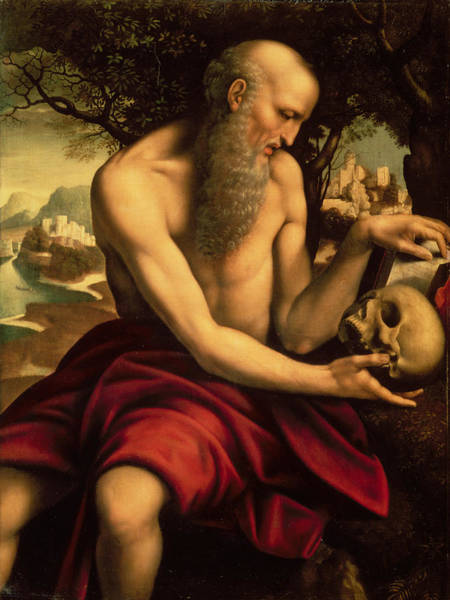 Cesare Painting - Saint Jerome by Cesare de Sesto