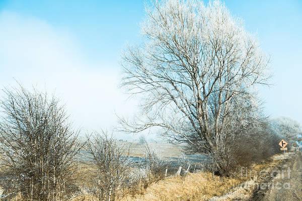 St. Marys Photograph - Saint Marys Snowstorm by Jorgo Photography - Wall Art Gallery