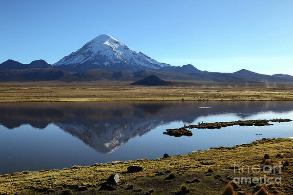 Photograph - Sajama Volcano Reflections Bolivia by James Brunker