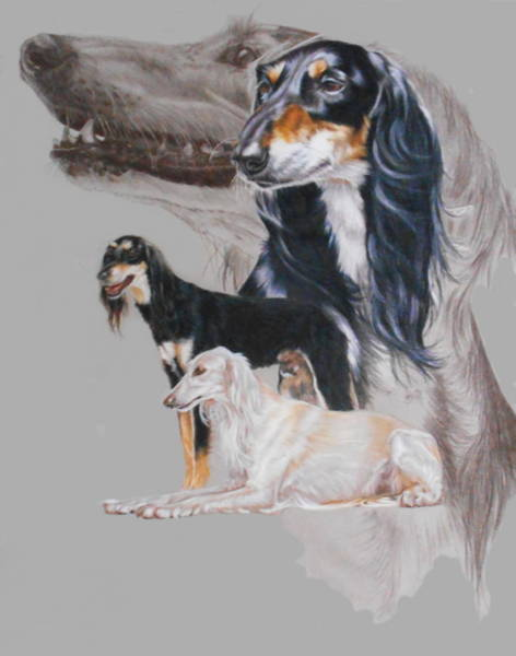 Mixed Media - Saluki Revamp by Barbara Keith