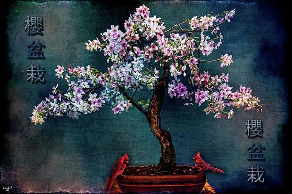 Photograph - Sakura Bonsai by Chris Lord