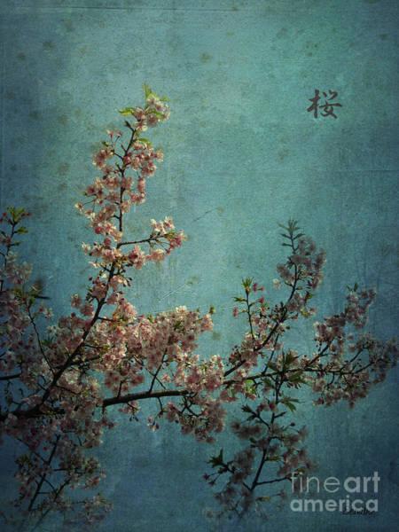 Photograph - Sakura by Eena Bo