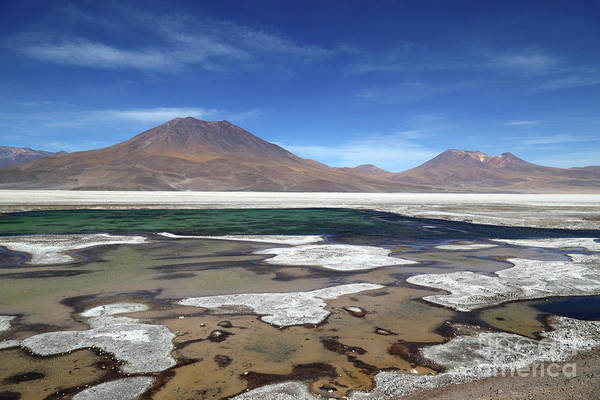 Photograph - Salar De Ascotan Chile by James Brunker
