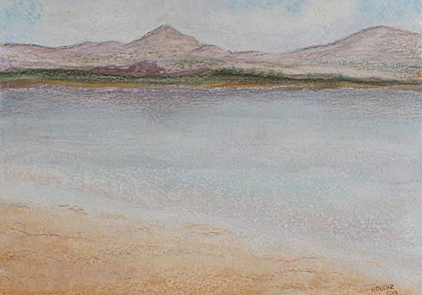 Painting - Salar by Norma Duch