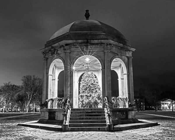 Photograph - Salem Commons Christmas Tree 2017 Salem Ma Black And White by Toby McGuire