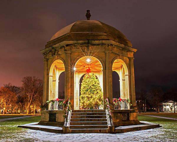 Photograph - Salem Commons Christmas Tree 2017 Salem Ma by Toby McGuire