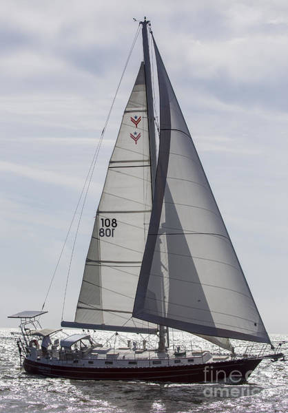Wall Art - Photograph - Saling Yacht Valkyrie Charleston Sc by Dustin K Ryan