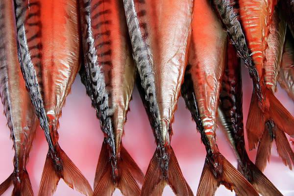 Photograph - Salmon Market Bergen by KG Thienemann