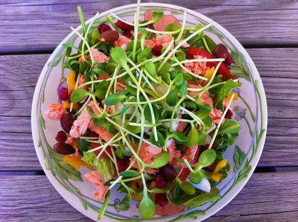 Photograph - Salmon Salad Made By Me by Polly Castor