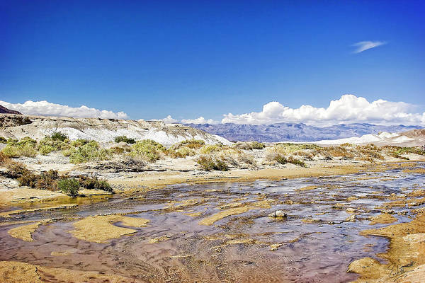 Photograph - Salt Creek - Death Valley by Endre Balogh