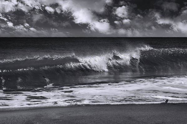 Salt Water Photograph - Salt Life Morning Bw by Laura Fasulo