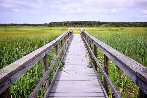 Wall Art - Photograph - Salt Marsh Boardwalk by Luke Moore