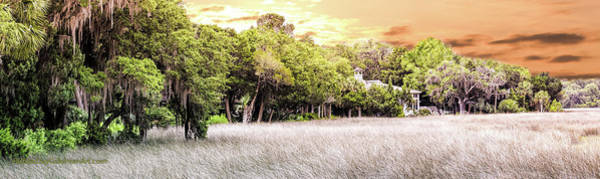 Photograph - Salt Marsh Panorama by Richard Goldman