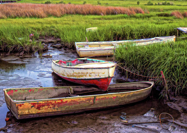 Photograph - Salt Marsh by Richard Goldman
