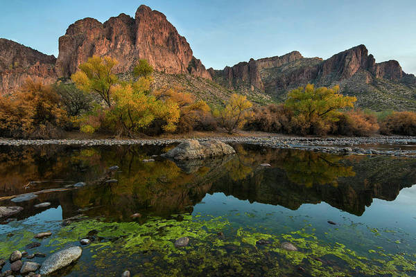 Photograph - Salt River Arizona Reflections by Dave Dilli