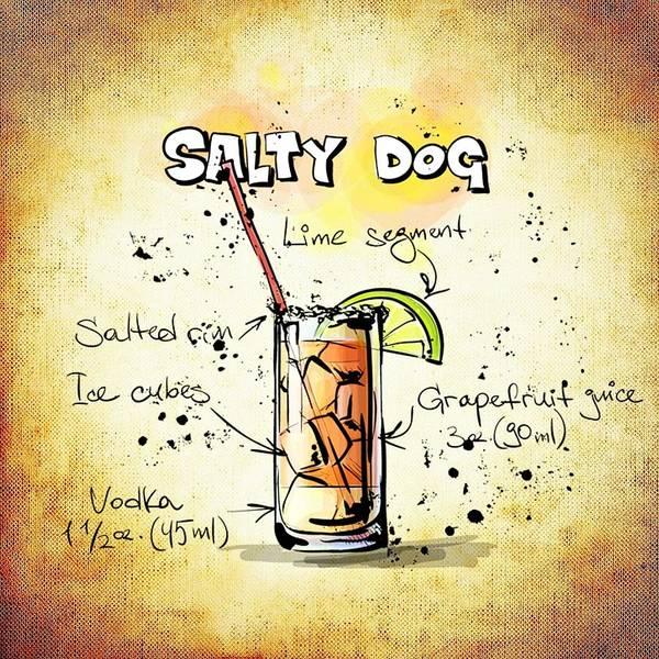 Digital Art - Salty Dog  by Movie Poster Prints