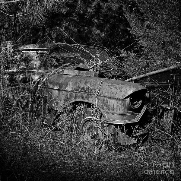Photograph - Salvage 5 by Patrick M Lynch