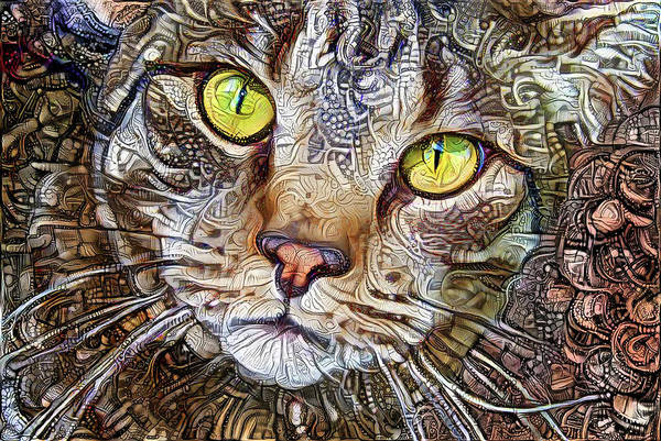 Digital Art - Sam The Tabby Cat by Peggy Collins