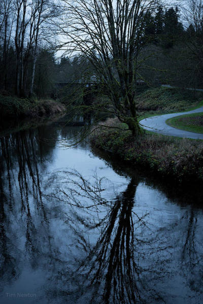 Photograph - Sammamish River At Dusk by Tim Newton
