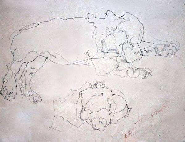 Pup Drawing - Sammy As A Pup by Joan  Jones