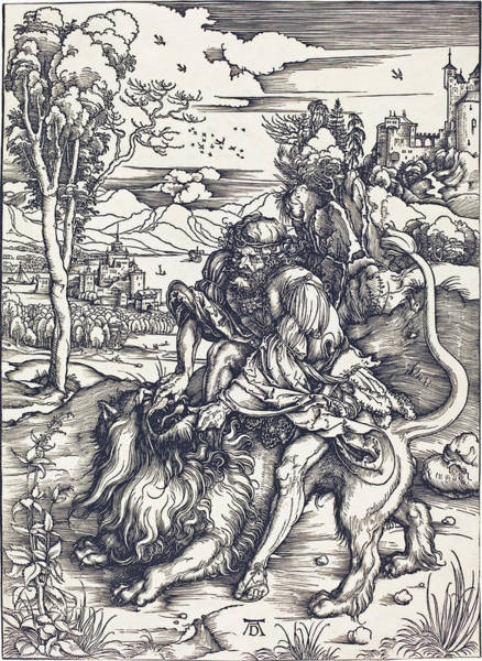 Drawing - Samson Fighting With The Lion by Albrecht Durer
