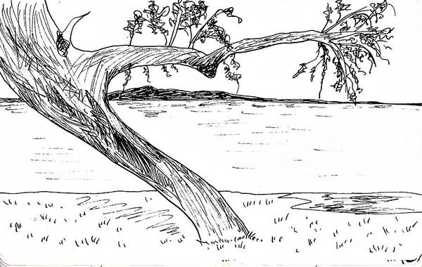 Drawing - San Bernardino Paraguay by Chani Demuijlder
