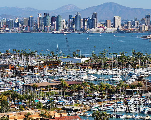 Wall Art - Photograph - San Diego Yacht Club by Russ Harris