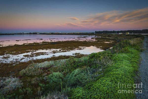 Photograph - San Fernando From Arillo River Cadiz Spain by Pablo Avanzini