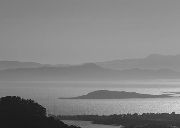Photograph - San Francisco Bay by Tom Potter