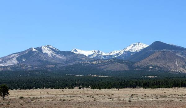 Photograph - San Francisco Peaks At Sunset Crater Volcano National Monument by Christy Pooschke
