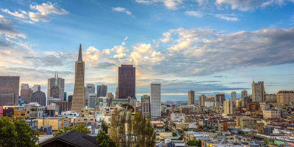 Photograph - San Francisco Skyscrapers by James Udall