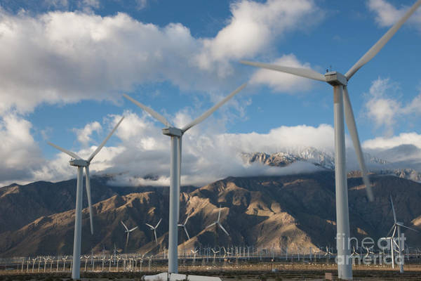 Photograph - San Gorgonio Pass Wind Farm II by Clarence Holmes