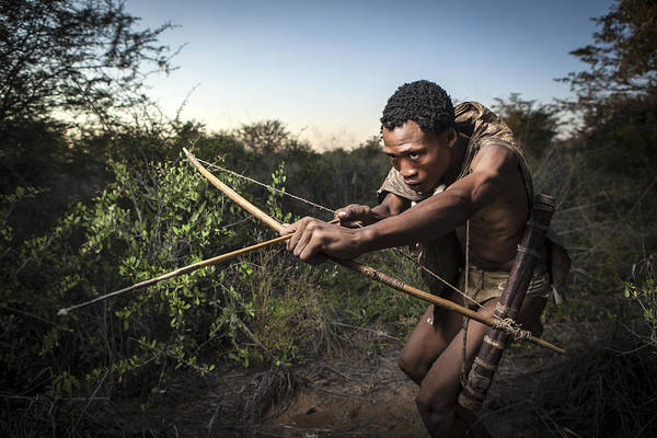 Hunting Photograph - San Hunting by Ben Mcrae