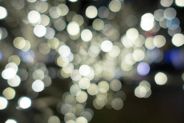 Photograph - San Jacinto Plaza Tree Lights by SR Green