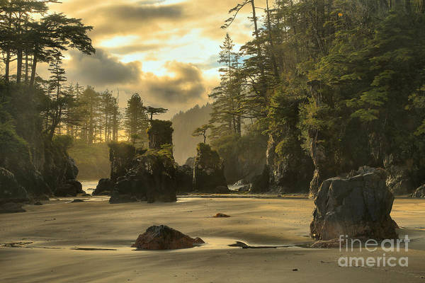 Photograph - San Josef Bay Sunset by Adam Jewell