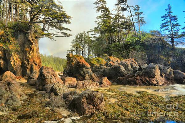 Photograph - San Josef British Columbia by Adam Jewell