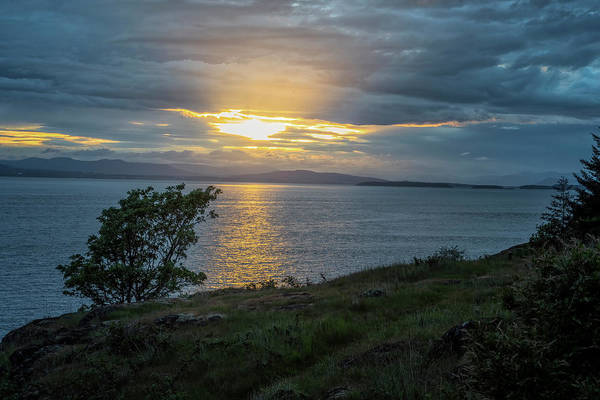 Photograph - San Juan Island Sunset by Tom Singleton