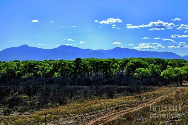 Photograph - San Pedro River Valley by Diana Mary Sharpton