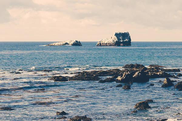 Photograph - San Simeon Coastline by Lee Harland