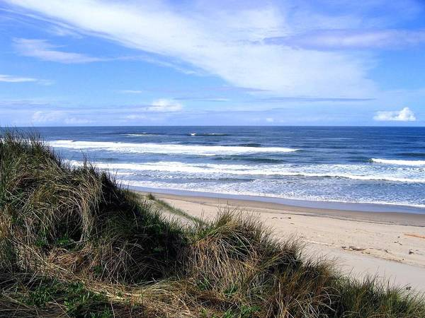 Oregon Sand Dunes Photograph - Sand And Sea 12 by Will Borden