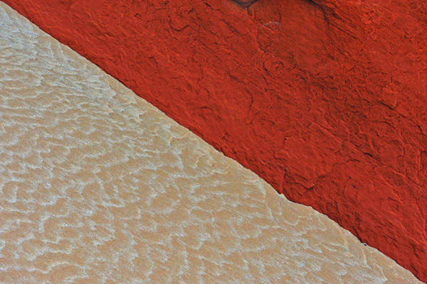 Photograph - Sand And Stone by Tony Beck