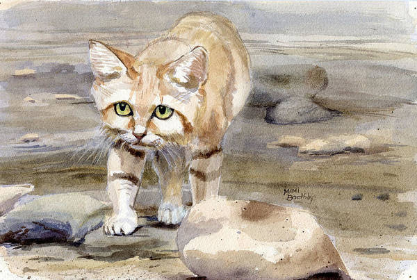 Painting - Sand Cat - Felis Margarita by Mimi Boothby