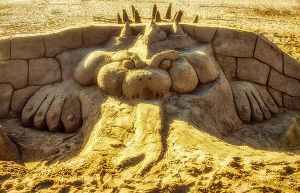 Wall Art - Photograph - Sand Devil by Garry Gay