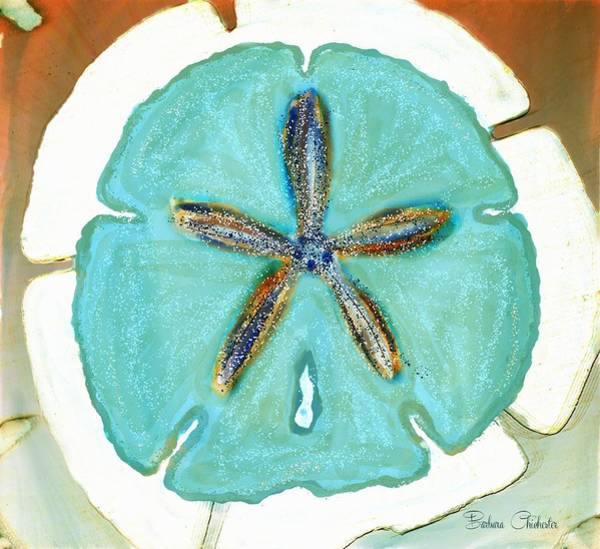 Wall Art - Photograph - Sand Dollar Star Attraction by Barbara Chichester