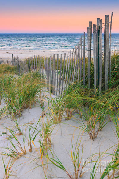 Meijer Wall Art - Photograph - Sand Dune Fences, Cape Cod by Henk Meijer Photography