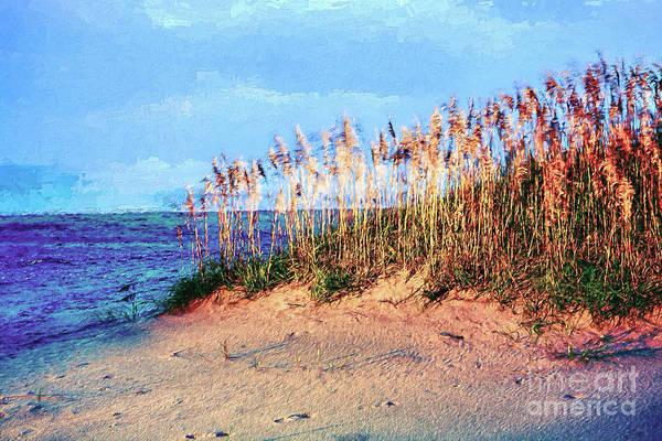 Sea Oats Painting - Sand Dune Sea Oats Sunrise Outer Banks Ap by Dan Carmichael